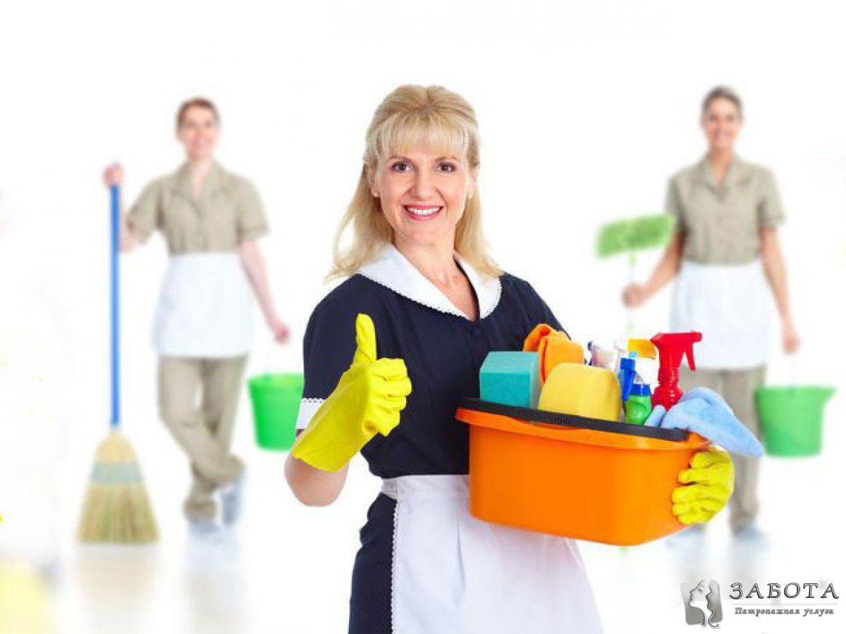 Инструкция загородного домработницы для дома
